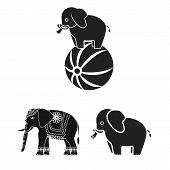 Vector Design Of Elephant And Asian Icon. Set Of Elephant And Elephant Vector Icon For Stock. poster