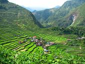 stock photo of ifugao  - Image of Batad village and rice terraces Ifugao province Philippines - JPG