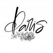 Paris Calligraphy Incription. Modern Brush Calligraphy. Vector Lettering Of Paris. poster