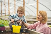 Mothers Day. Happy Mothers Day. Mother And Son In Greenhouse At Mothers Day. Mothers Day Holiday. poster