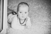 Baby With Blue Eyes On Adorable Face. Infant Crawl On Floor Carpet. Child Development Concept. Child poster