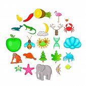 Maintain The Wildlife Icons Set. Cartoon Set Of 25 Maintain The Wildlife Icons For Web Isolated On W poster