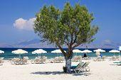 Mastichari beach on Kos Island Dodecanese, Greece poster