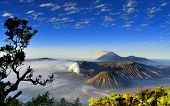 Landscape of bromo mount