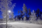 A Road Through Peaceful Winter Night Scene Under Beautiful Blue Sky. Snow Cowered Trees In Very Cold poster