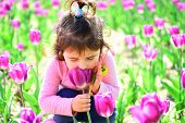 Hot Summer. Face And Skincare. Allergy To Flowers. Small Child. Natural Beauty. Childrens Day. Littl poster