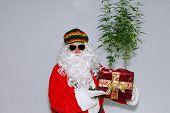 Rastafarian Santa Claus. Rasta Claus holds Marijuana Plants. Marijuana Plants as Christmas Gifts. Ca poster