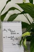 Coco Chanel Quotes Written On A Block Note And Potted Houseplant, Inspiration Phrase my Life Didnt poster