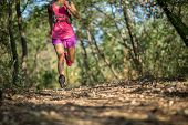 Woman Trail Runner Running In Forest Trail poster