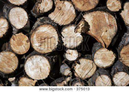 Wood Pile Wide 2