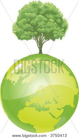 Green Tree Earth