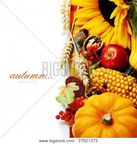 Harvested pumpkins with fall leaves, flowers and fruits over white