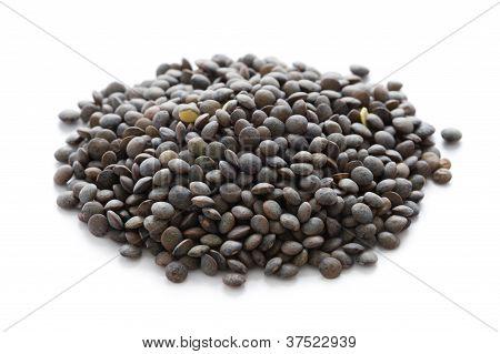 Puy Lentil Or Lentilles Vertes over white isolated