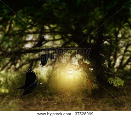 a girl with a lantern behind a tree watching birds fly