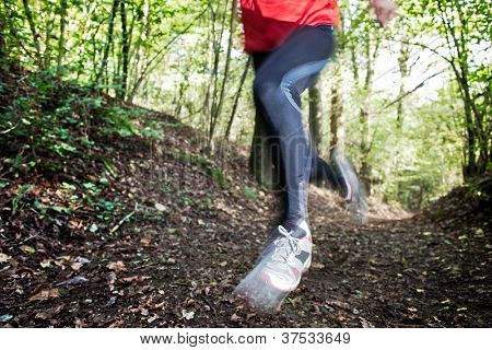 Male trail runner running in the forest on a trail. Red shirt and black pants. Summer season. Slight blur in runner to show motion. Horizontal composition.