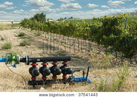 Bombas de agua para el riego de viñedos