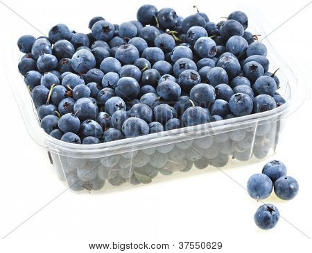 sweet fresh blueberry