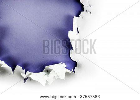 Purple Paper Hole.