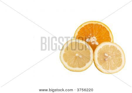 Lobule Of Orange And Lemon. #2