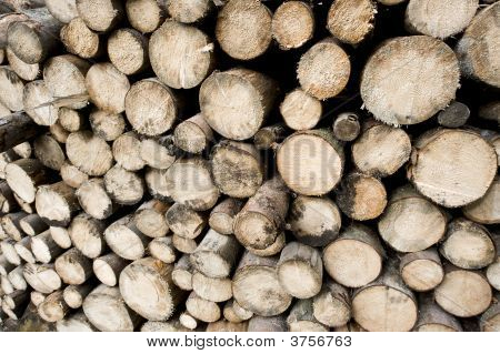 Woodpiles - Skew View