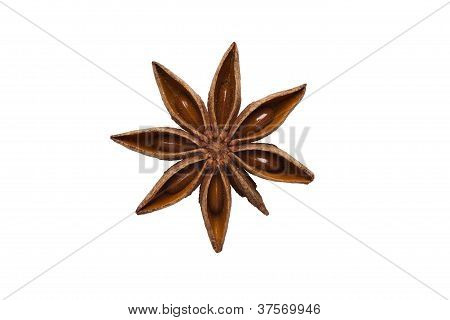 Aniseed Isolated On White Background