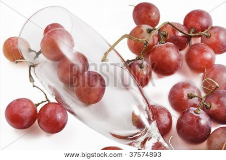 Grapes and glass of wine