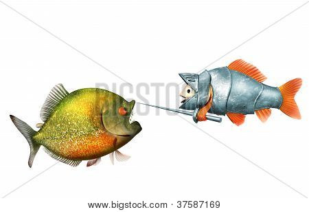 goldfish knight and piranha, duel concept