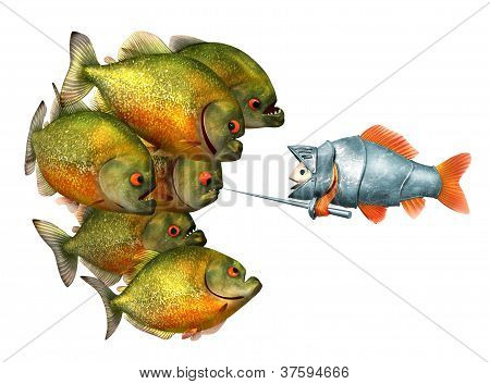goldfish knight and piranhas