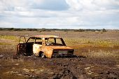 picture of marshes  - old rusty car abandoned in the middle of marsh - JPG
