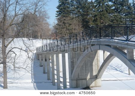 Bridge In Snowy Forest