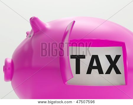 Tax In Piggy Shows Taxation Savings Taxpayer