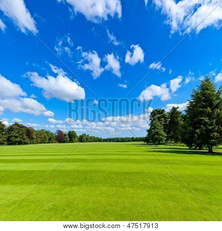 Summer landscape with green park lawn and blue sky