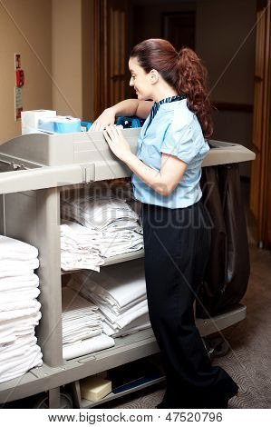 Pretty Housekeeping Executive Busy Working