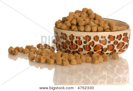 Hund Essen Gericht