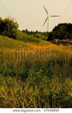 Windturbine_meadow