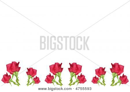 Red Rose Flower Border