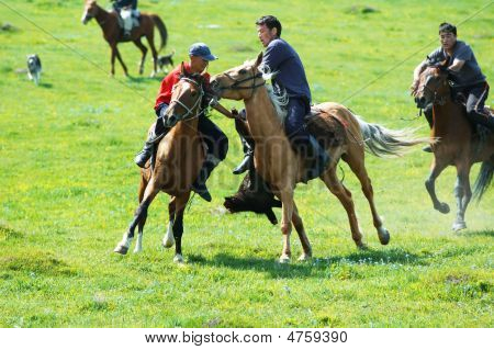 Kokpar - Traditional Nomad Horses Competitions