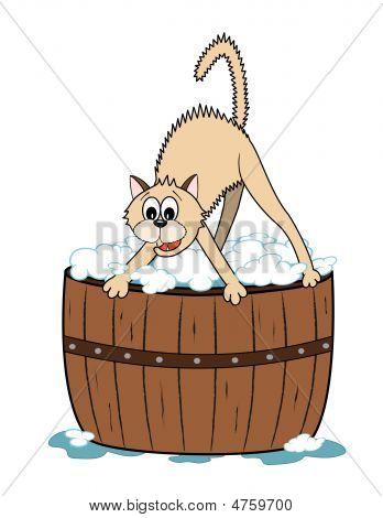 Bathtime For Kitty