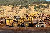 image of wheel loader  - A large wheeled loader unloads a log truck at a small log sawmill in Oregon - JPG