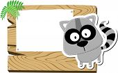 raccoon cartoon background