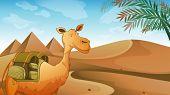 stock photo of sandstorms  - Illustration of a camel at the desert - JPG
