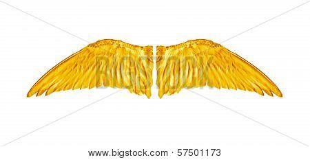 Pair of Angelic Golden Bird Wings