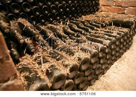 Wine cellar with old wine.