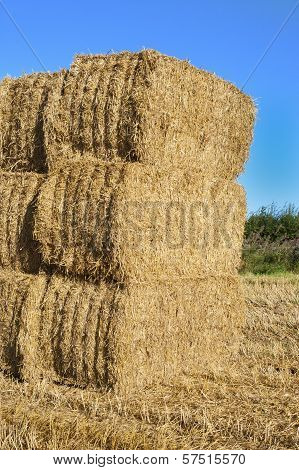 A stack of hay bales in a field