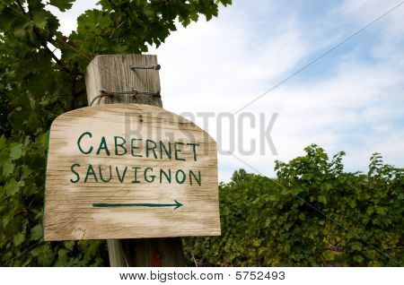 Vineyard Sign for Cabernet Sauvignon