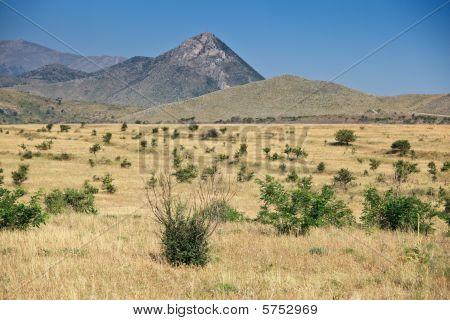 Torrid Landscapes Of Calabria