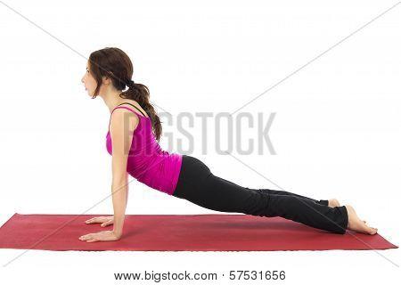 Upward Facing Dog Pose In Yoga
