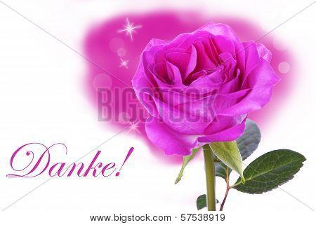 Pink Rose With Danke