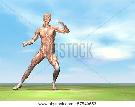 Male musculature ready to fight - 3D render