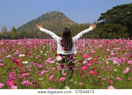 Woman In Cosmos Flower Field